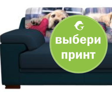 Принт на диван