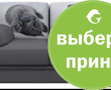 Необычные принты на диван